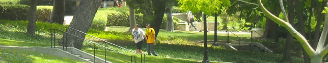 Photo of students on hillside walk leading to Powell Library.