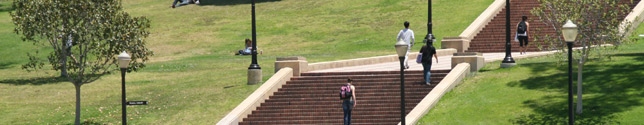 Photo of students climbing Janns steps.