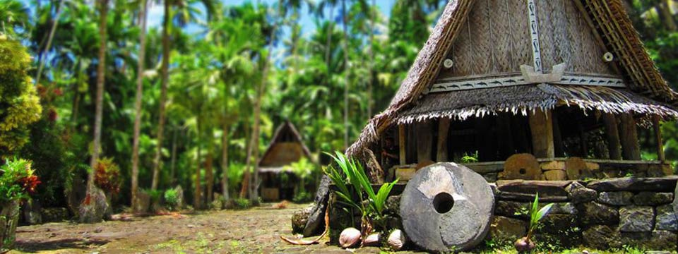 A hut in tropical Oceania