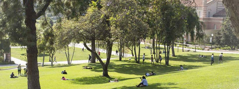 People relax, read, and walk through a hilly, grassy area of UCLA