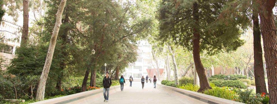 ucla-prestige-graduate-campus-walk