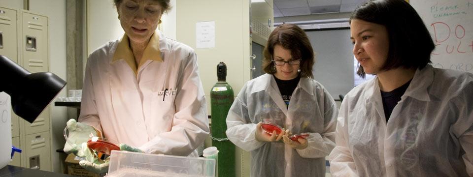 Epidemiology | UCLA Graduate Programs