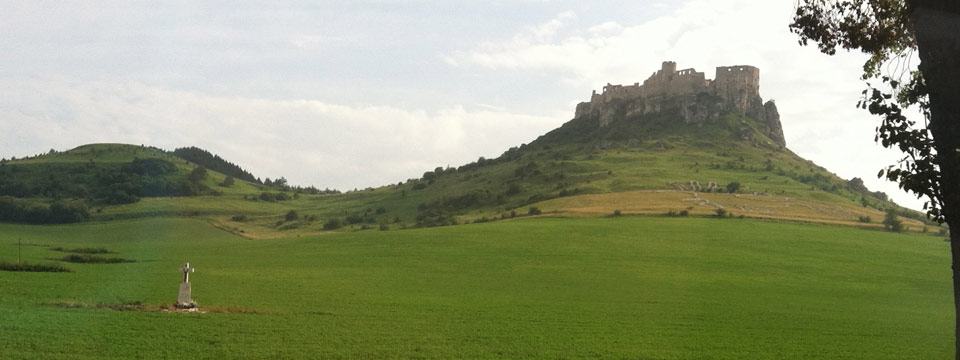 Grassy field with castle in distance